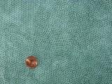 Tissu patchwork fond bleu à pois bleus